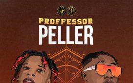 seyi vibes-professor peller